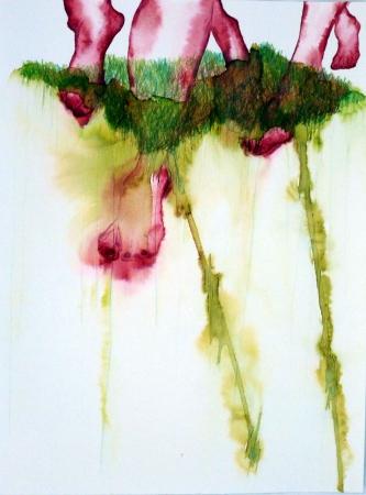 Pieds-Paysages VIII