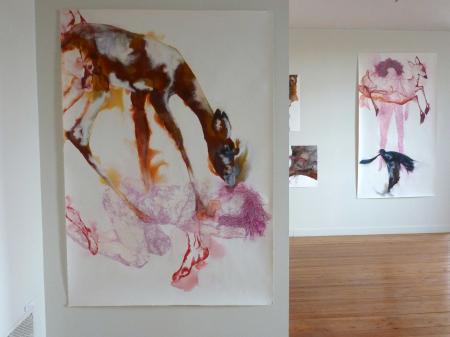 """Expo """"A l'ombre des oiseaux"""" -2012-"""
