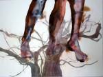 patricia cartereau, dessin, pieds