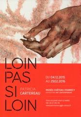 patricia cartereau, exposition, musée-château d'annecy, art contemporain