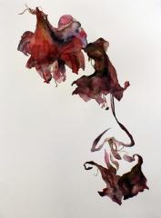 patricia cartereau, dessin, aquarelle